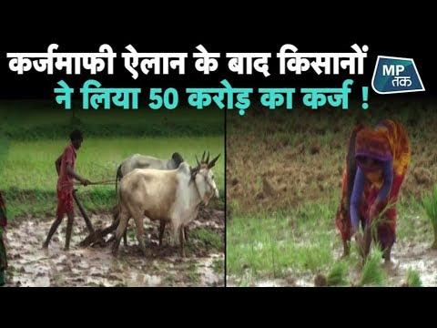 मध्यप्रदेश के इस जिले के किसान तो गजब के होशियार निकले!| MP Tak