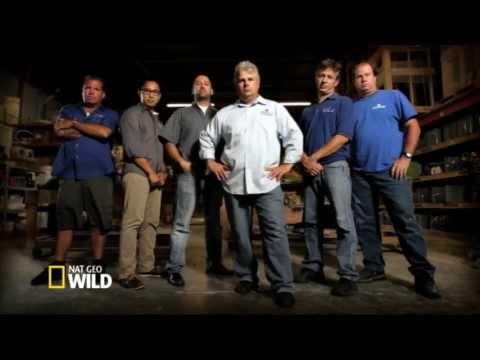 Brand New Fish Tank Kings On Nat Geo WILD
