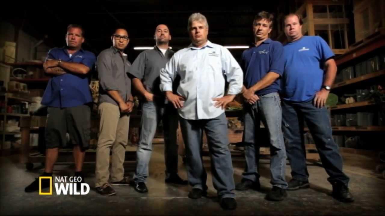 Brand new fish tank kings on nat geo wild youtube for Fish tank kings