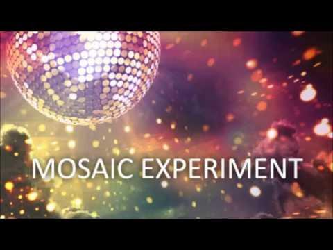 Mosaic Experiment -- Volunteer LNT!