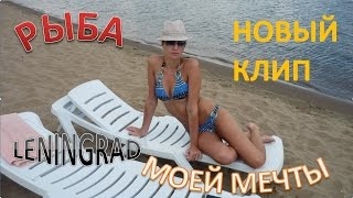 РЫБА МОЕЙ МЕЧТЫ (MIX) - ЛЕНИНГРАД