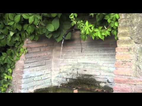 黃露儀 - 花精音樂情緒療癒(2)柔軟的水滴 - 心的方向