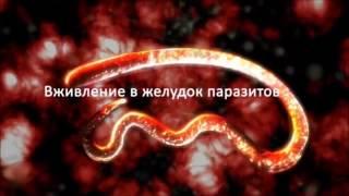 зеленый кофе для похудения украина(, 2013-10-16T11:50:02.000Z)