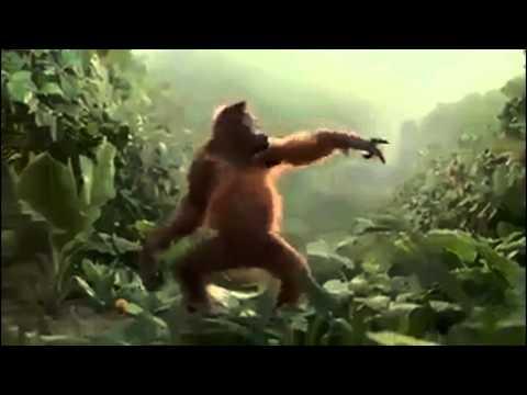 Monkey Dance-Funny Video