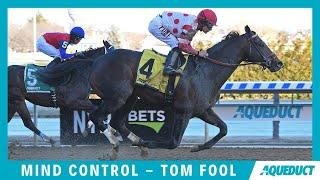 Mind Control - 2020 - Tom Fool