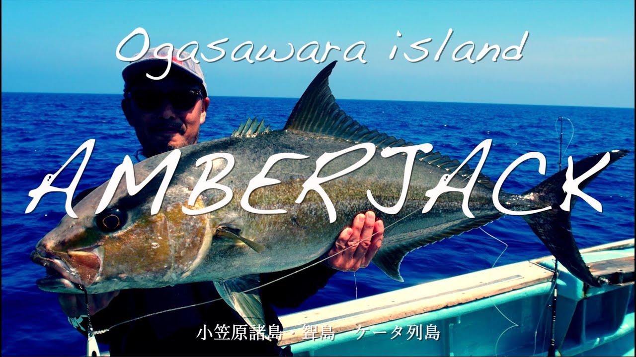 【NatureBoys,鉄ジグ】小笠原聟島ケータ列島 カンパチジギング/ AmberJack in Ogasawara 【ネイチャーボーイズ柳 賢太郎】