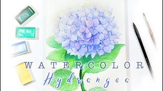 Watercolor Violet Hydrangea Flower Painting - How to Draw a Hydrangea in watercolour 水彩紫陽花  手繪繡球花