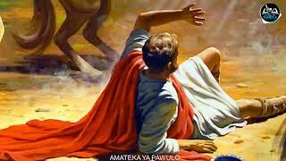 AMATEKA YA PAWULO BIVUGWA KO ARI WE WANDITSE IBITABO BYINSHI MURI BIBILIYA
