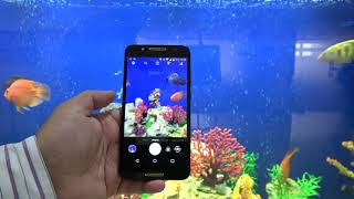 لمحة تقنية شاملة عن هاتف الكاتل A7