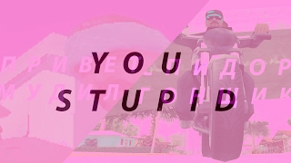 You Are Stupid