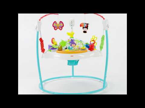 Fisher-Price Animal Activity Jumperoo | Toys R Us Canada