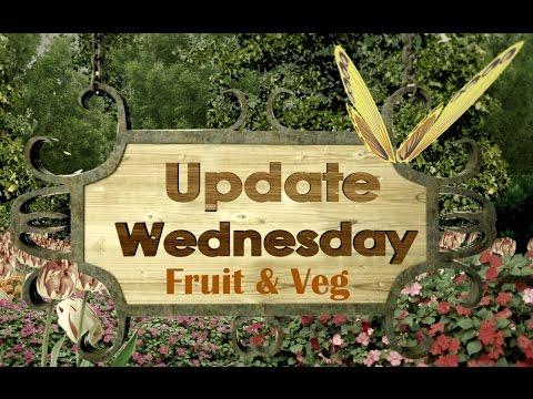 Allotment Wednesday Update 2015