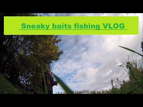 Fly Fishing In Belgium 1