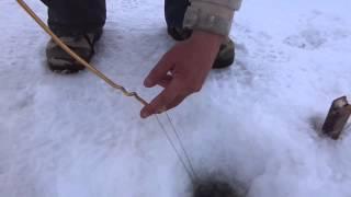 Ловля налима и щуки со льда на поставухи. Гениальное приспособление для проверки поставух от Сергея.