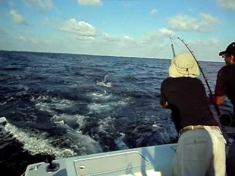 Offshore Fishing Boat Caribbean Ocean Caymen Island 25 Pound Wahoo