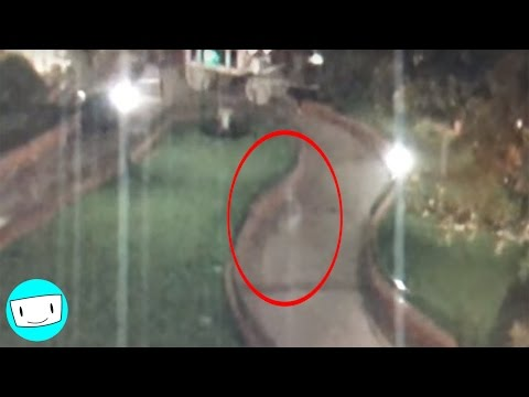 Pacey Williams - Ghosts Have Been Caught on Video At Disneyland