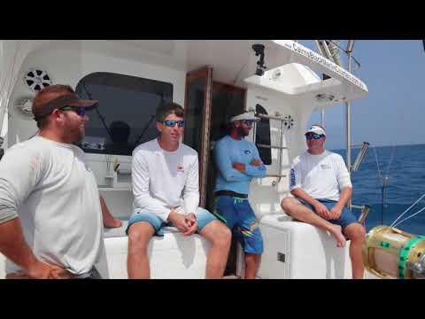 Cairns Black Marlin Fishing - HellRaiser2 - October 2017