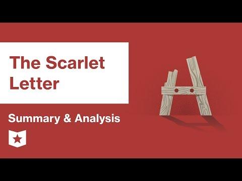 The Scarlet Letter  | The Custom-House | Nathaniel Hawthorne