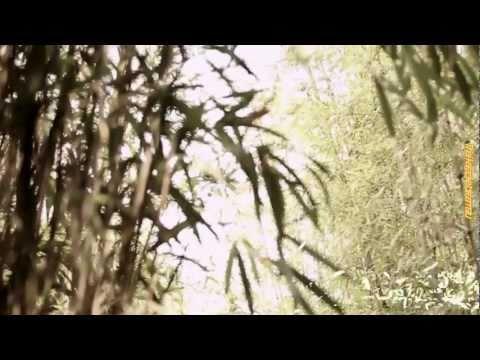 [Karaoke]SS501 HEO YOUNG SAENG - RAINY HEART[Thai sub]