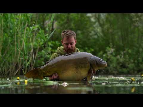 A Closer Look On CarpInsula Carp Lakes In Belgium!