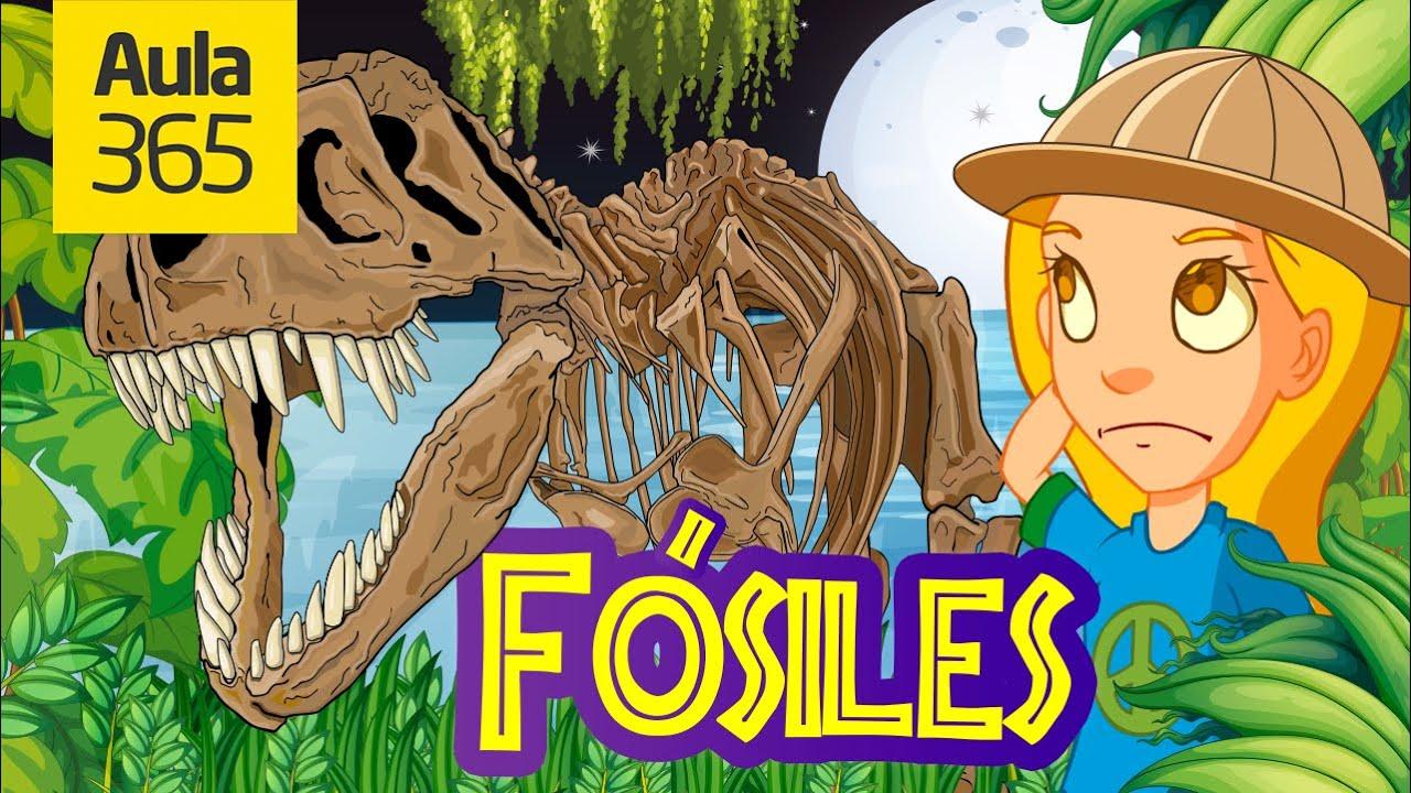 ¿Qué Son Los Fósiles?