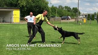 HSV Nijkerk zomer training IGP Pakwerk 2020