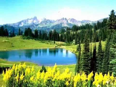 Andzikas - Į Gamta