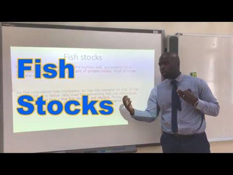 Season Finale -B3 4 Fish stocks