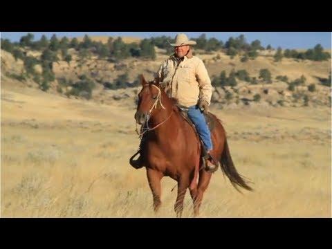 Saving Sage Grouse: The Wyoming Example