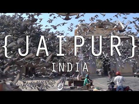 City Palace, Hawa Mahal, Jantar Mantar (Ancient astronomical instruments) - Jaipur |  India