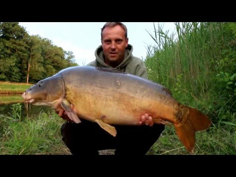 CANAL CARPFISHING  FRENCH ADVENTURE 2015 HD
