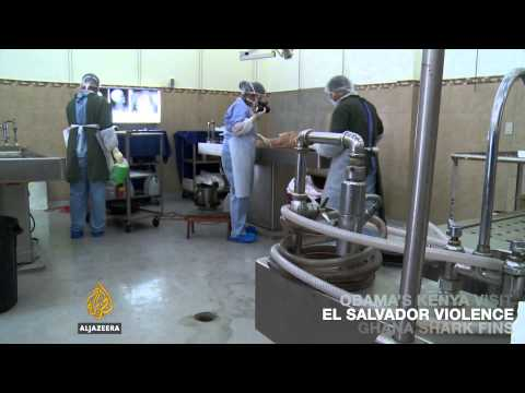 On Al Jazeera: El Salvador's morgues are full with the victims of gun violence