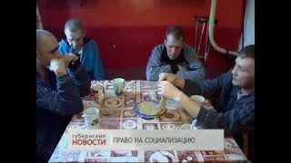 Частный приют для бездомных в Воронеже