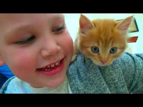 Мистер Макс и Мисс Кейти их кошечка Мурка!★Mr. Max and Miss Katie their cat Murka!