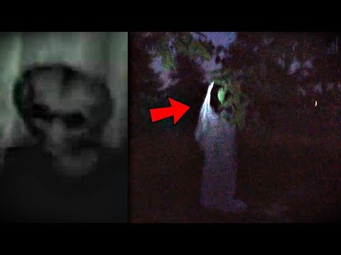 5 Scary Creature Videos You've Never Seen