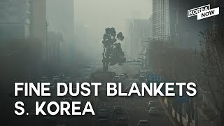 [NEWS]  BLACKPINK 'Ddu-Du Ddu-du', 2nd Trump-Kim summit,  fine dust