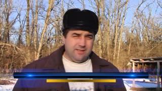 Уперше в Україні розводити зайця-русака почали на Полтавщині