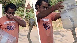 コブラを捉えたのを見た時、人々は興奮を覚えた
