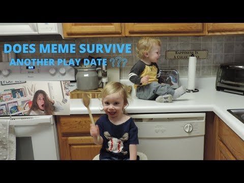DOES MEME SURVIVE ANOTHER PLAYDATE
