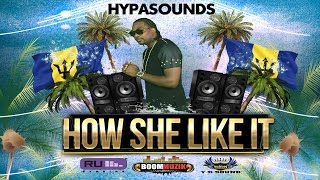 "Hypasounds - How She Like It ""2016 Soca Music"""