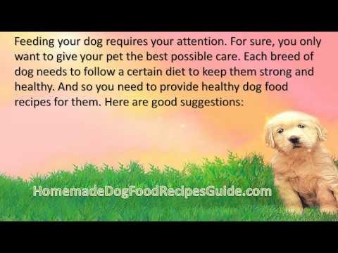 Dog Food Recipes Chicken Liver