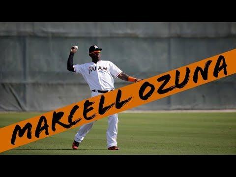Marcell Ozuna 2017 Highlights [HD]