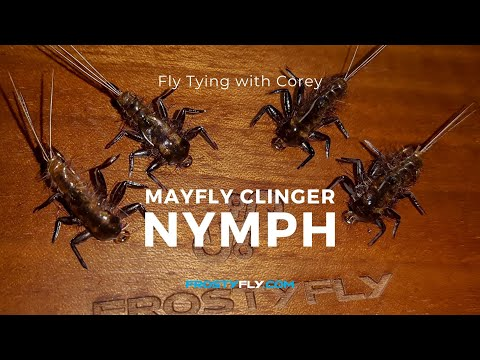 Fly Tying: Mayfly Clinger Nymph by Corey Cabral