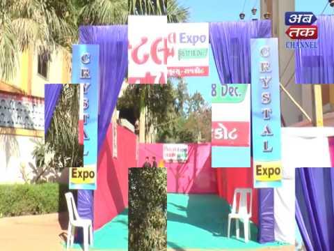 #science expo - crystal schools-rajkot