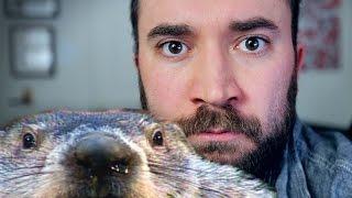 I Hate Groundhog Day