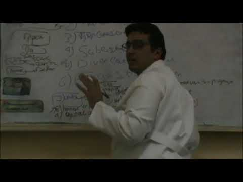 Internal Medicine Dr Amr AbdelFattah