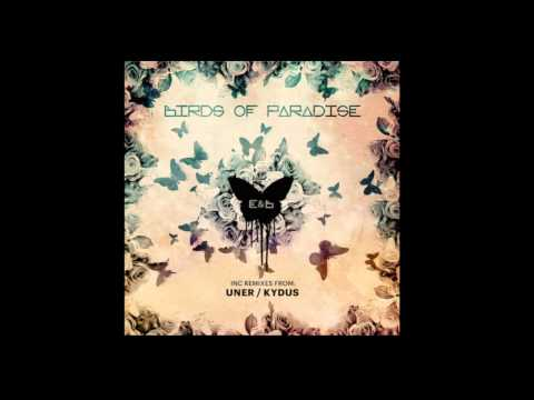 Eagles & Butterflies - Birds of Paradise