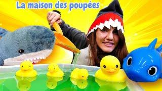 Shark fait la piscine pour la famille des canards. Vidéo amusante.
