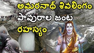 The Most Mysterious Shiva Lingam in India//Mysterious shiva temples in India// Mystery Shiva Temple