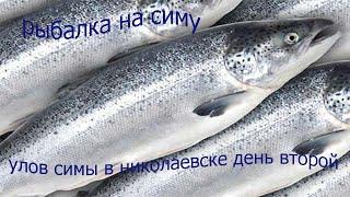 рыбалка сетью на симу